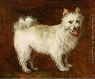 Gainsborough.Spitz dog