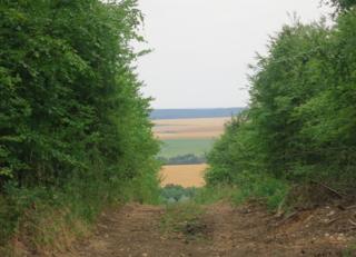 Verdun.Hill 304. The view.24 July2015