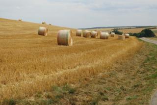 Verdun.bales of straw near Morte-Homme.24July2015