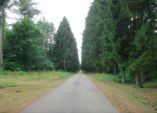 Verdun.The long road to Hill 304.24July15