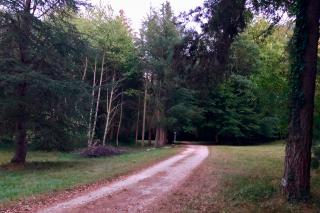 Saint-Fargeau.Walking around the lake.26AUG2018