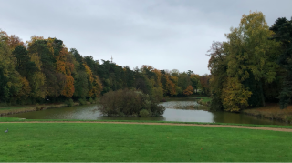 France2019.Chantilly lake and autumn color.3NOV2019