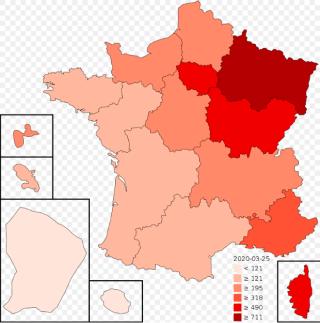 France.covid-19.April 11