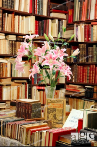 St-Malo.Librarie le Septentrion.lilies
