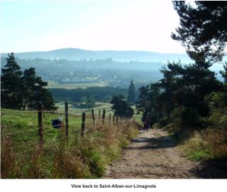 Looking back at St Alban.Melinda Lusmore