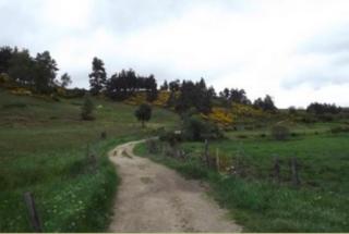 Gr65 between Saint Alban and Aumont Aubrac.Via Agrippa
