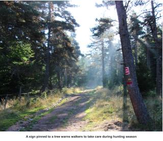 Trail after le Falzet.Melinda Lusmore.I love walking in France.