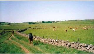Hiking-6.aubrac plateau