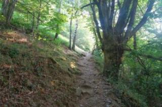 Golinhac.ascending trail from Estaing.fredrando photo