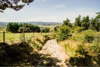 Montrisol to Sauges.the gentle terrain.