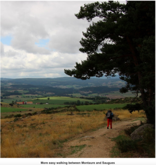 Montrisol d'Alliers to Saugues.gentle walking on a high plateau.Melinda Lusmore