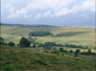 L'Aubrac landscape.wikipedia