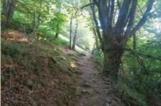 Hiking-7
